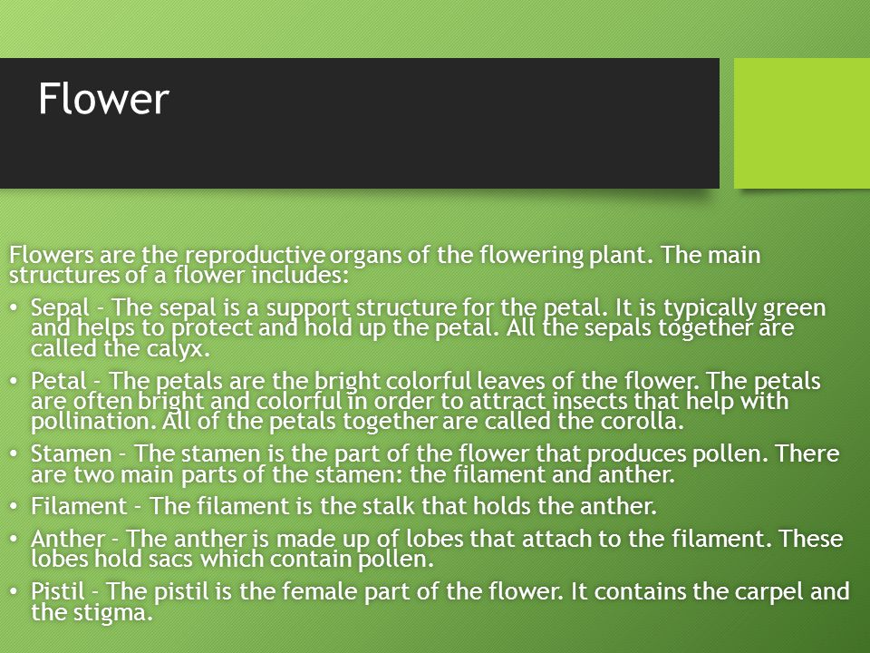 Flower Flowers are the reproductive organs of the flowering plant. The main structures of a flower includes: