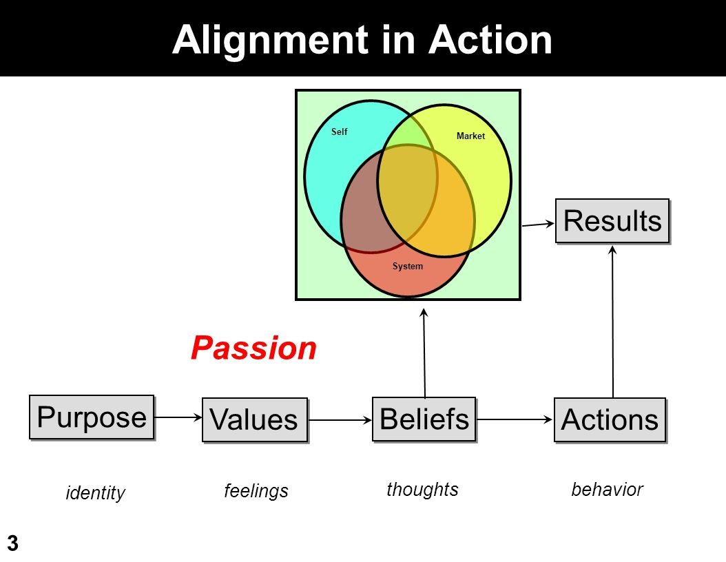 Alignment in Action Passion Results Purpose Values Beliefs Actions
