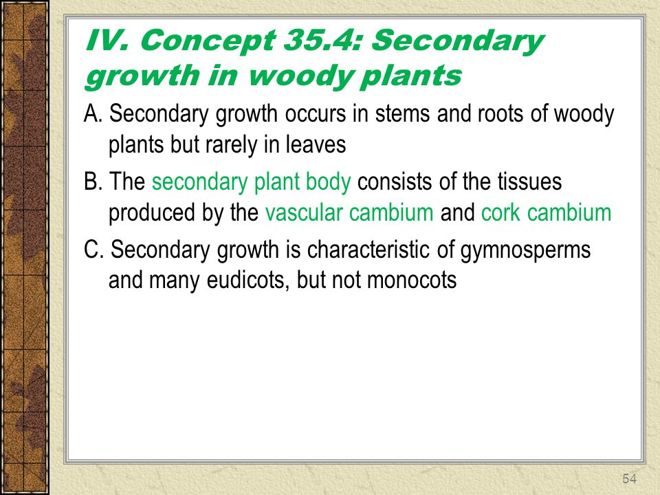 IV. Concept 35.4: Secondary growth in woody plants