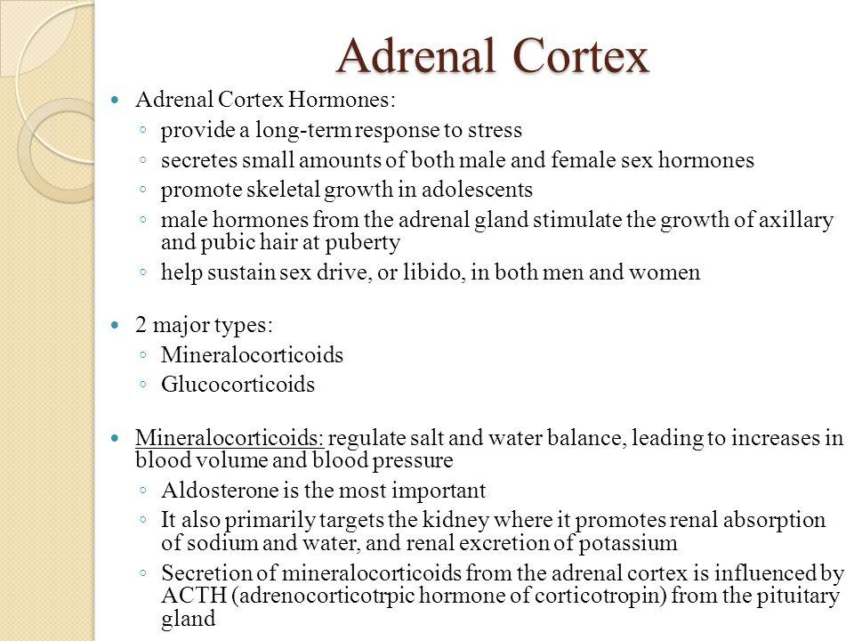 Adrenal Cortex Adrenal Cortex Hormones: