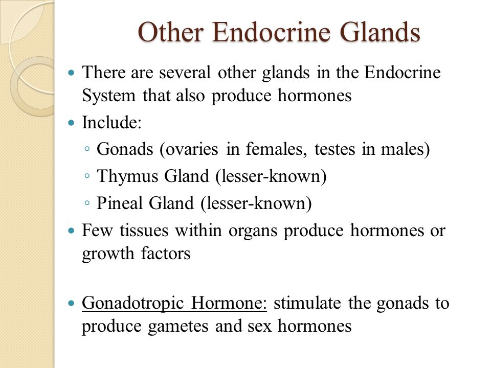 Other Endocrine Glands