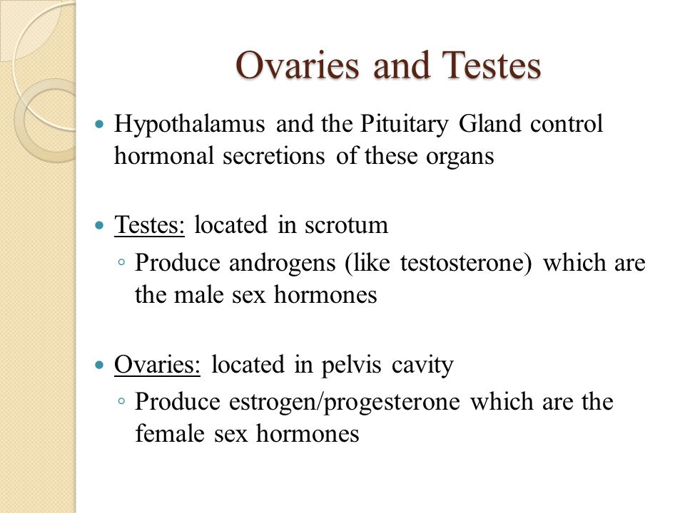 Ovaries and Testes Hypothalamus and the Pituitary Gland control hormonal secretions of these organs.