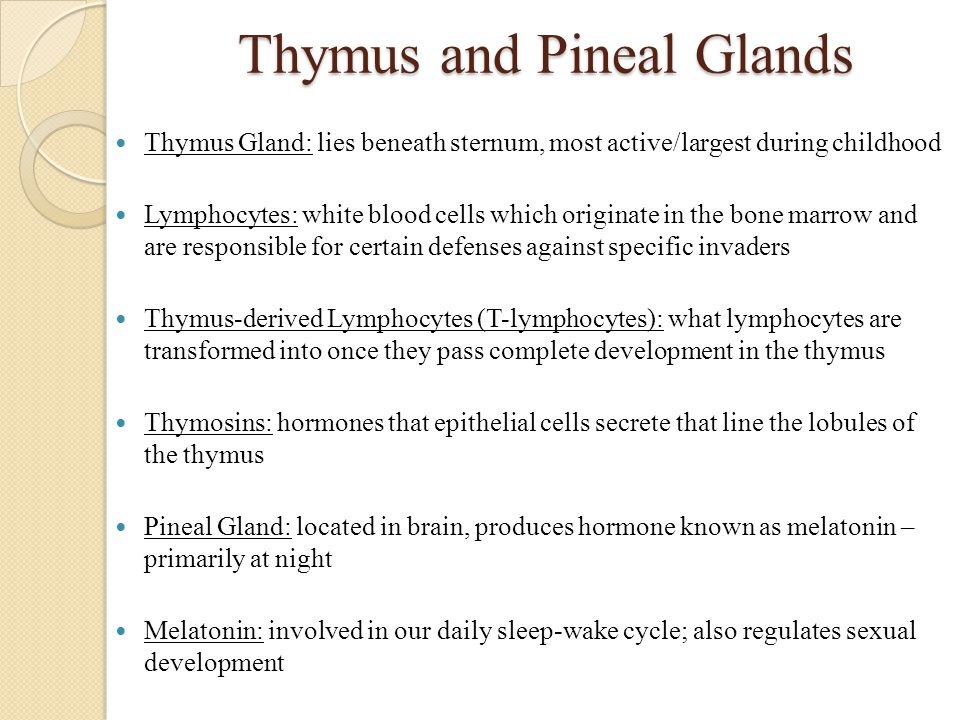 Thymus and Pineal Glands