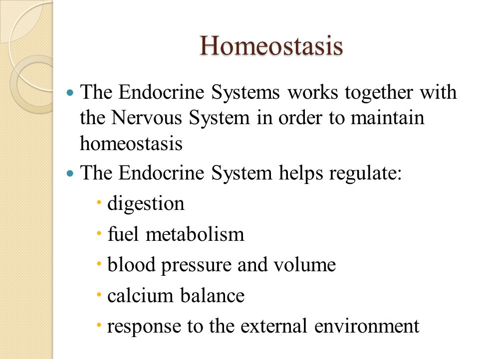 Homeostasis The Endocrine Systems works together with the Nervous System in order to maintain homeostasis.