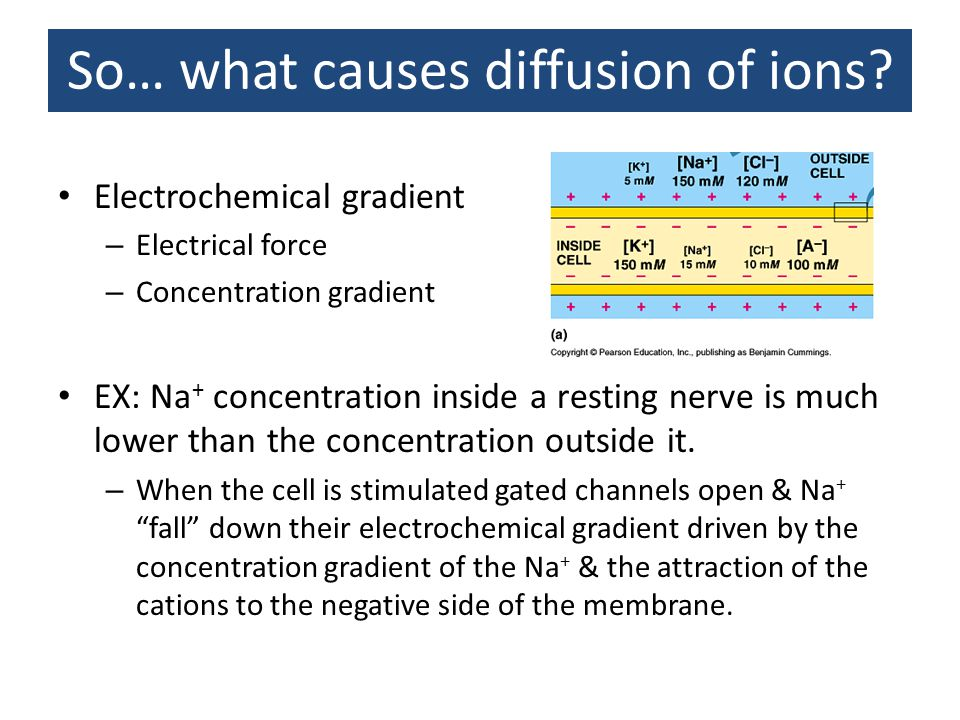 So… what causes diffusion of ions