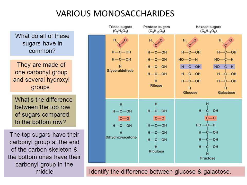 VARIOUS MONOSACCHARIDES