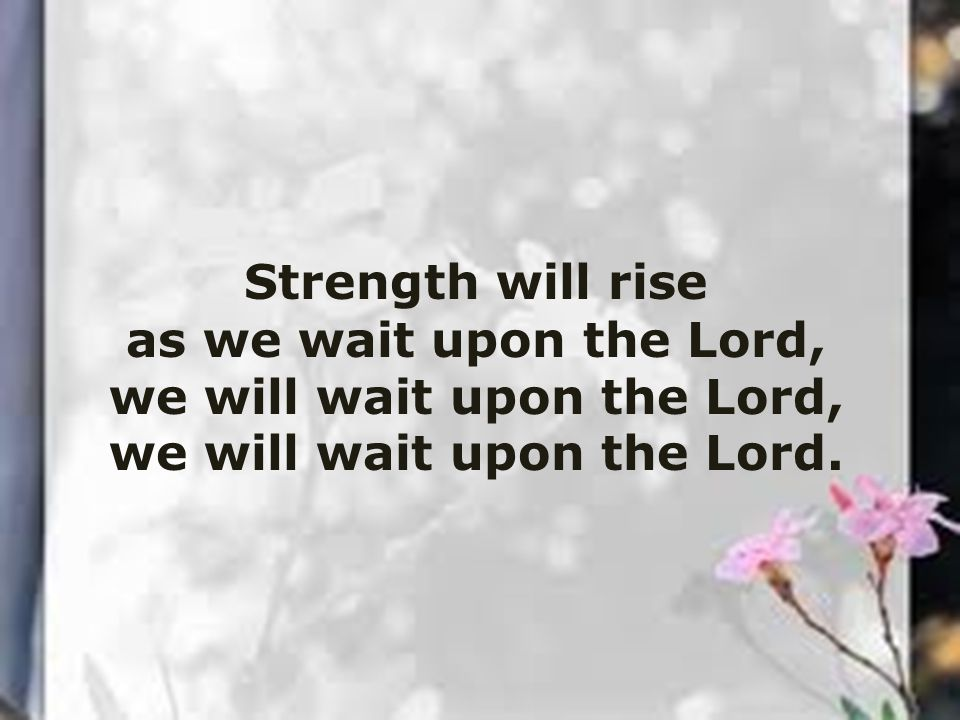 Strength will rise as we wait upon the Lord, we will wait upon the Lord, we will wait upon the Lord.