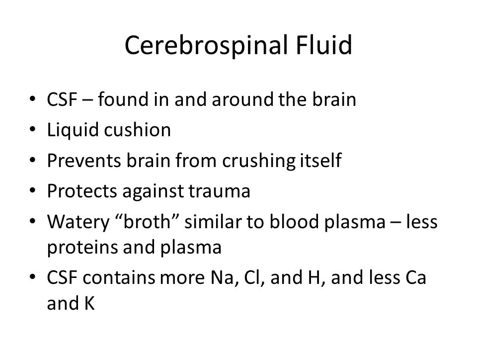 Cerebrospinal Fluid CSF – found in and around the brain Liquid cushion