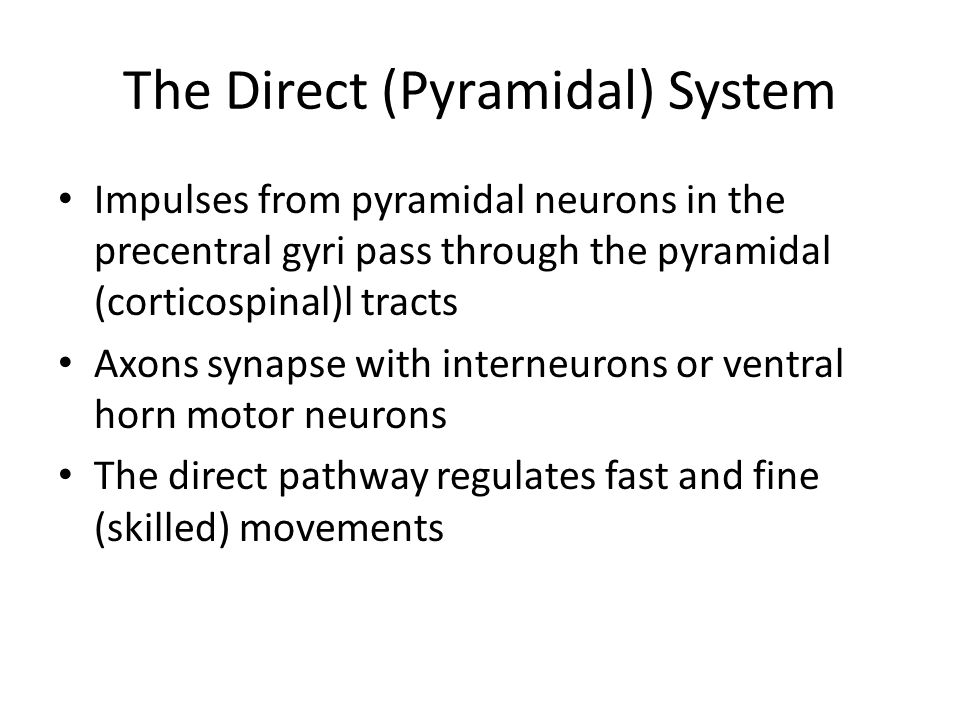 The Direct (Pyramidal) System