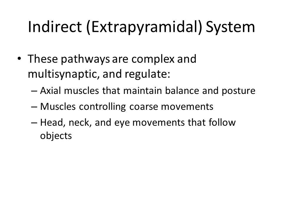 Indirect (Extrapyramidal) System