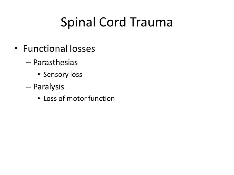 Spinal Cord Trauma Functional losses Parasthesias Paralysis