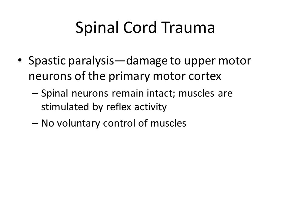 Spinal Cord Trauma Spastic paralysis—damage to upper motor neurons of the primary motor cortex.