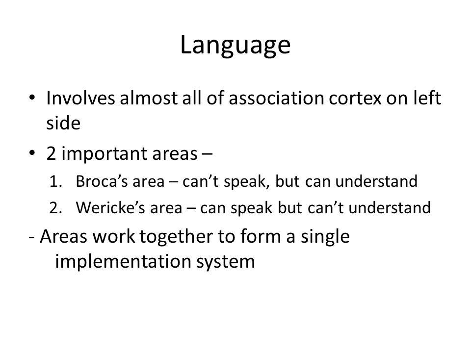Language Involves almost all of association cortex on left side