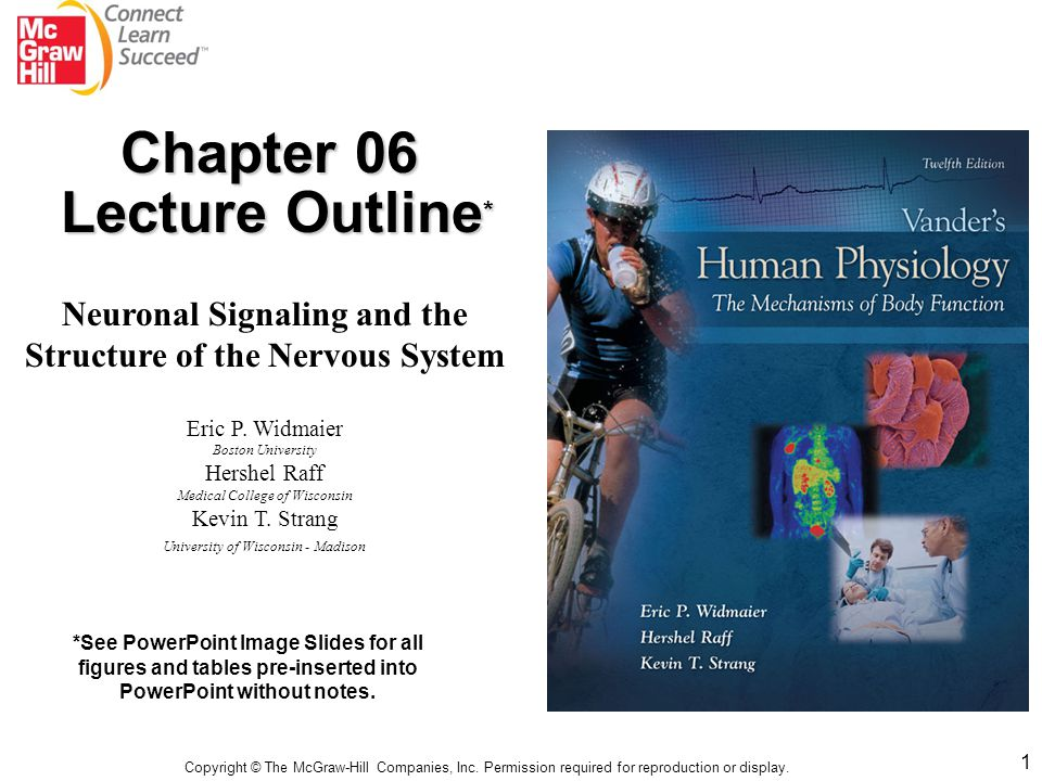 Chapter 06 Lecture Outline*