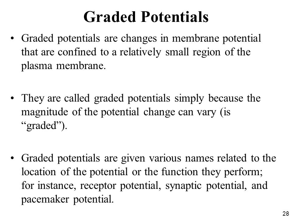 Graded Potentials Graded potentials are changes in membrane potential that are confined to a relatively small region of the plasma membrane.