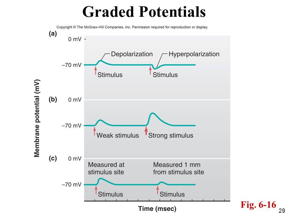 Graded Potentials Fig. 6-16