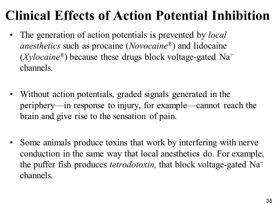 Clinical Effects of Action Potential Inhibition