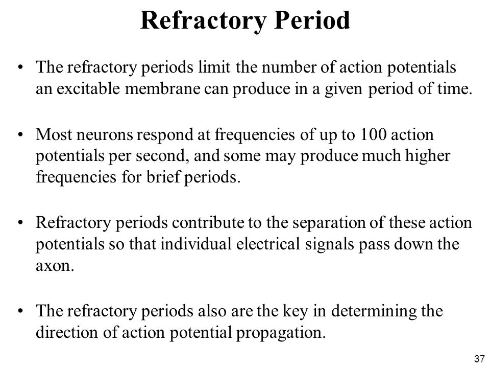 Refractory Period The refractory periods limit the number of action potentials an excitable membrane can produce in a given period of time.