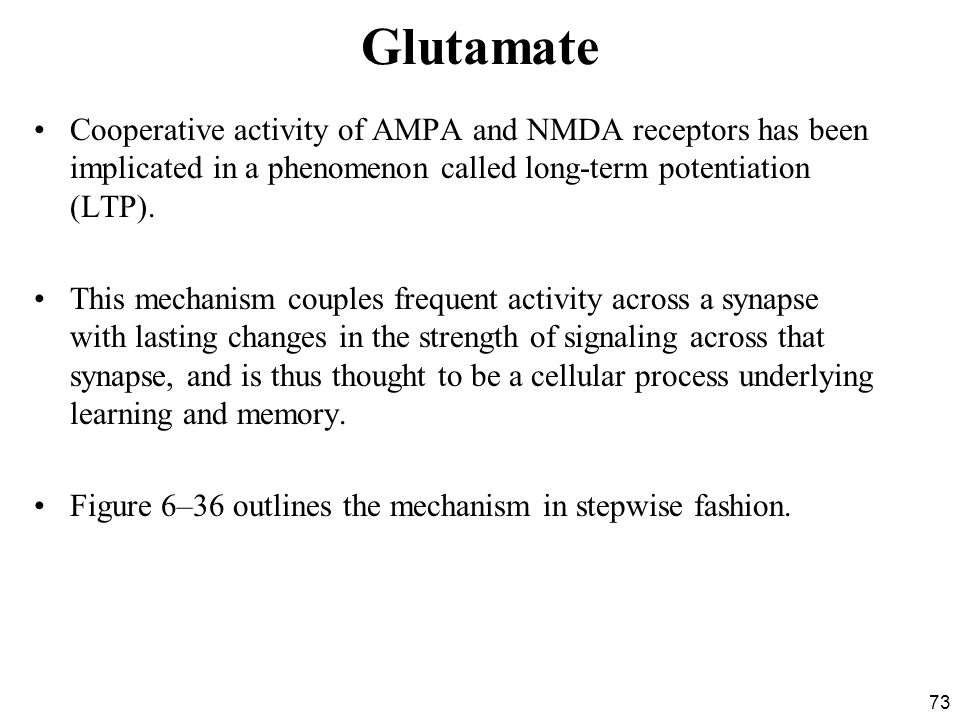 Glutamate Cooperative activity of AMPA and NMDA receptors has been implicated in a phenomenon called long-term potentiation (LTP).