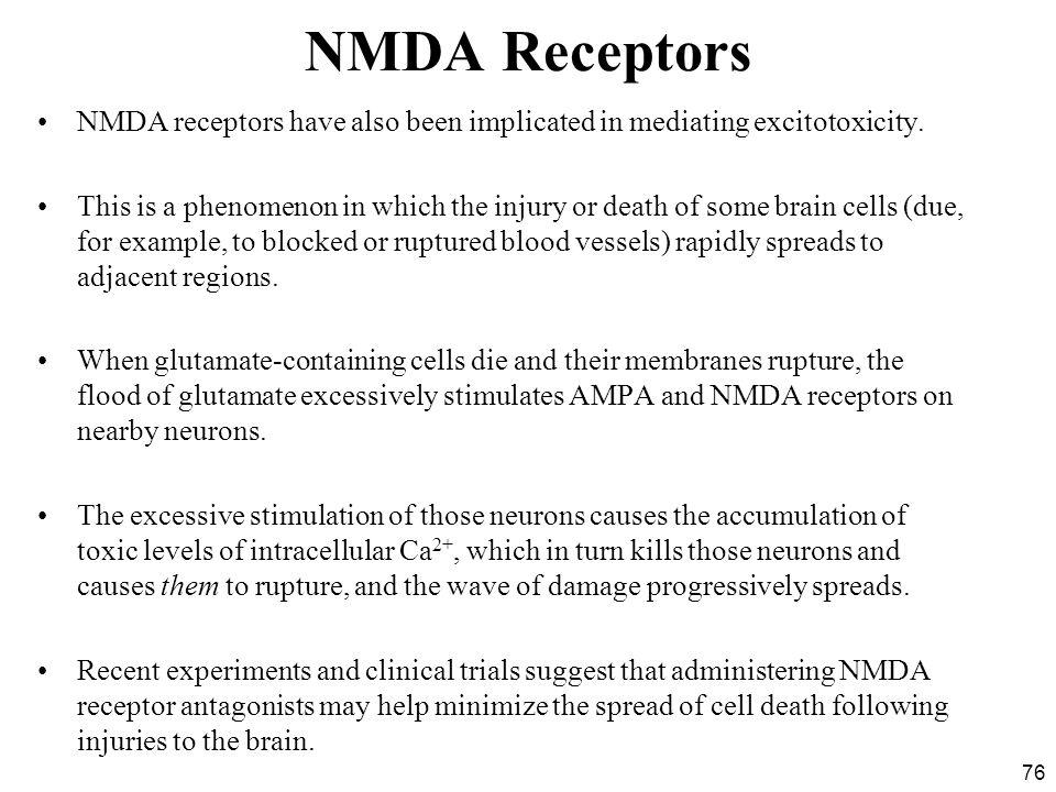 NMDA Receptors NMDA receptors have also been implicated in mediating excitotoxicity.