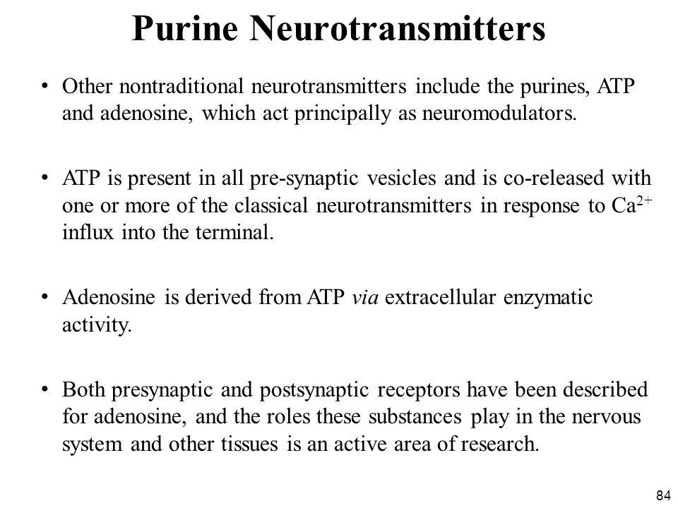 Purine Neurotransmitters