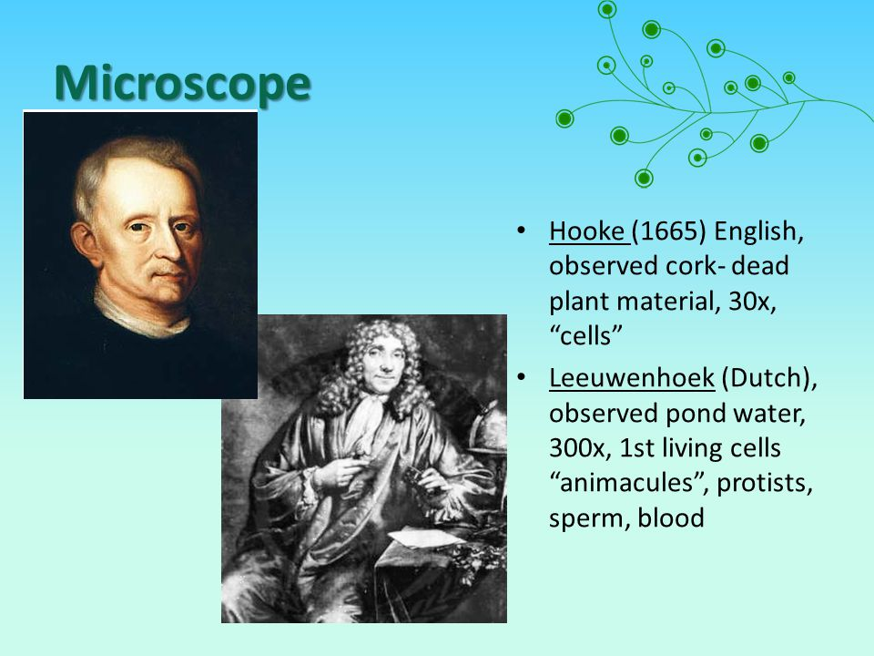Microscope Hooke (1665) English, observed cork- dead plant material, 30x, cells