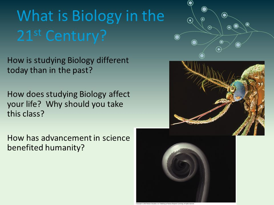 What is Biology in the 21st Century