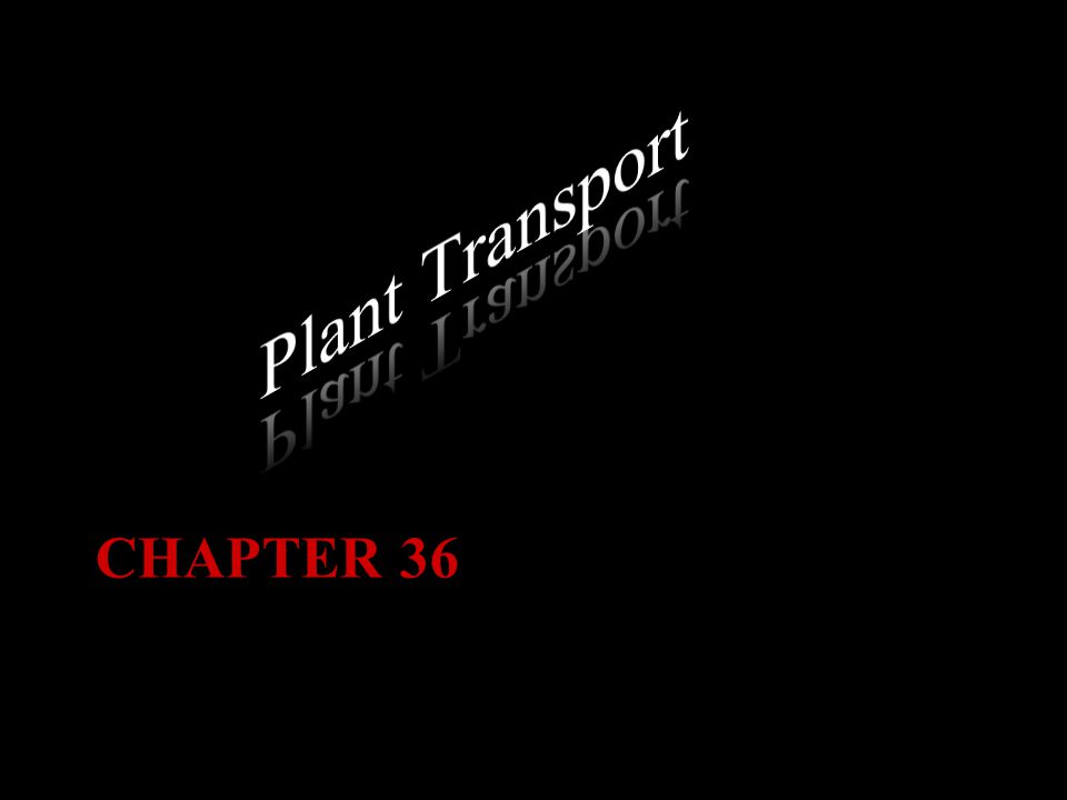 Plant Transport Chapter 36