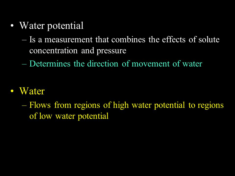 Water potential Is a measurement that combines the effects of solute concentration and pressure. Determines the direction of movement of water.