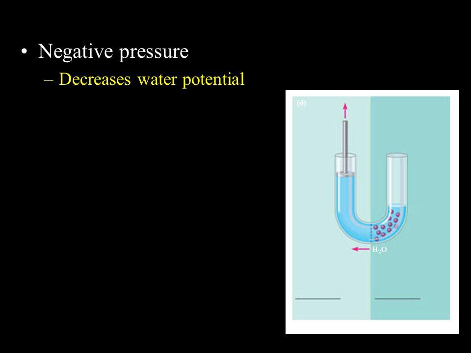 Negative pressure Decreases water potential H2O (d)