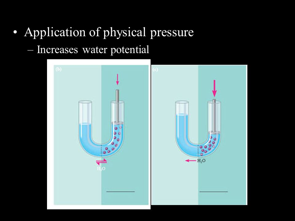 Application of physical pressure