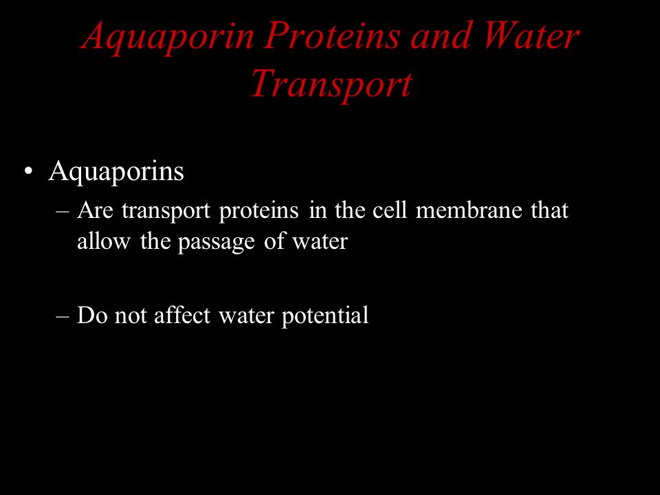 Aquaporin Proteins and Water Transport