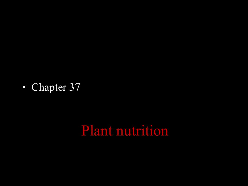 Chapter 37 Plant nutrition