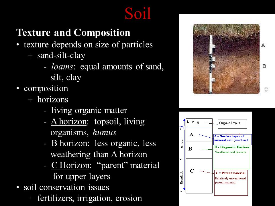 Soil Texture and Composition texture depends on size of particles