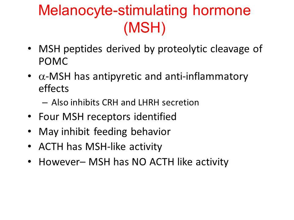 Melanocyte-stimulating hormone (MSH)