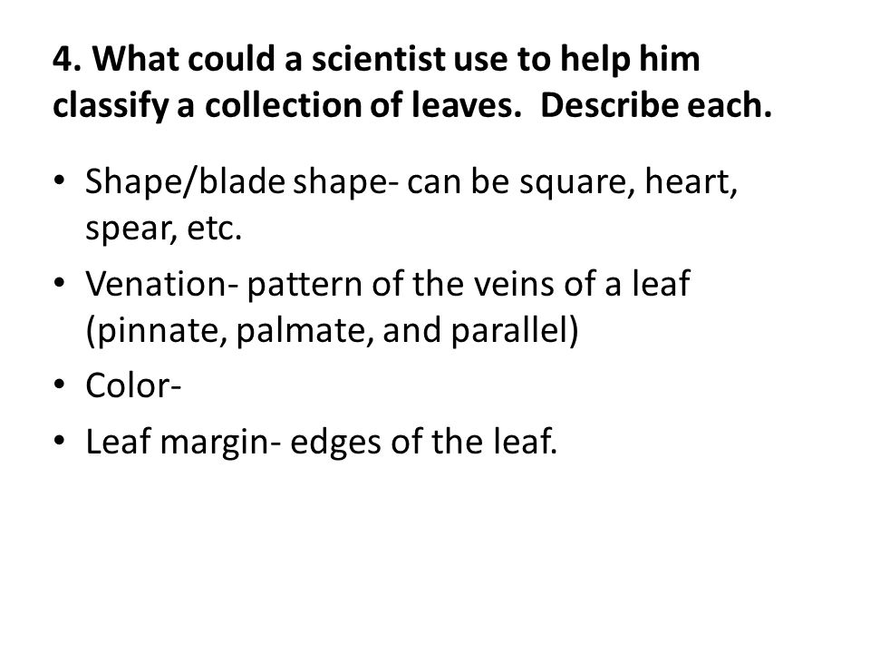 4. What could a scientist use to help him classify a collection of leaves. Describe each.
