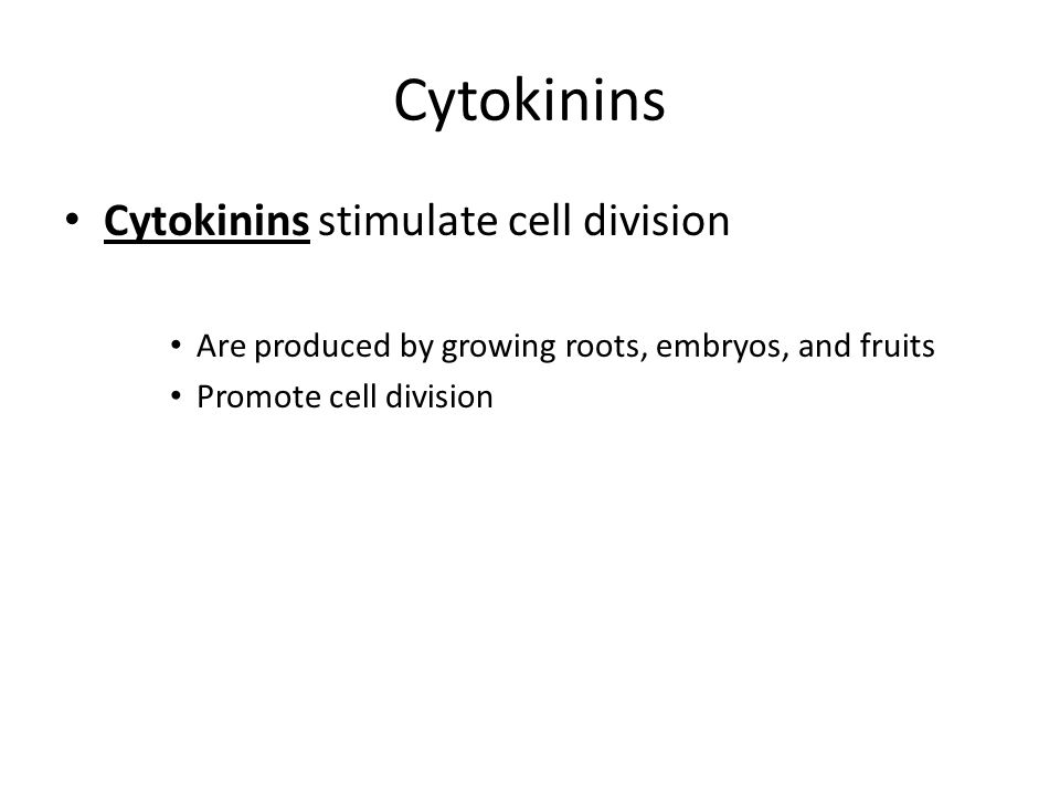 Cytokinins Cytokinins stimulate cell division