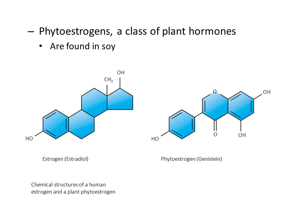 Phytoestrogens, a class of plant hormones