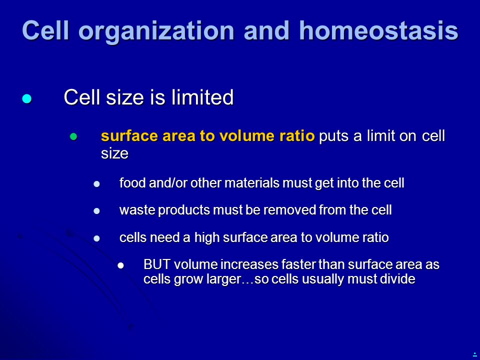 Cell organization and homeostasis