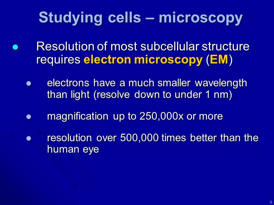 Studying cells – microscopy