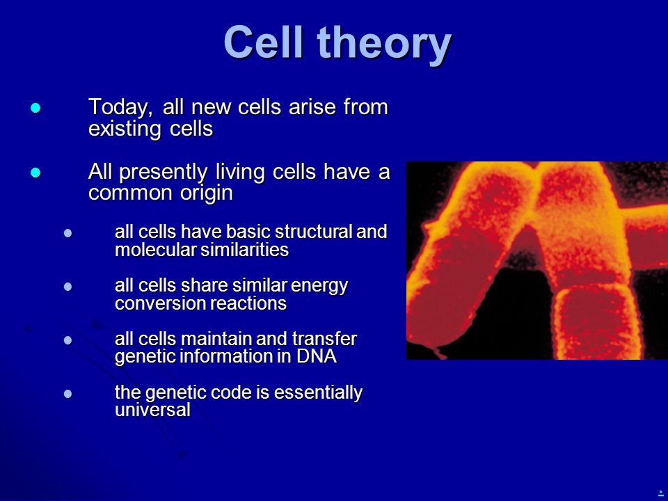 Cell theory Today, all new cells arise from existing cells