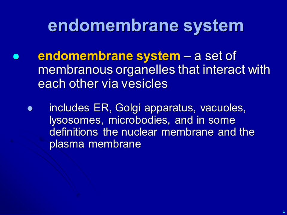 endomembrane system endomembrane system – a set of membranous organelles that interact with each other via vesicles.
