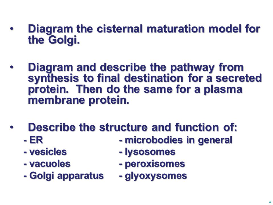 Diagram the cisternal maturation model for the Golgi.