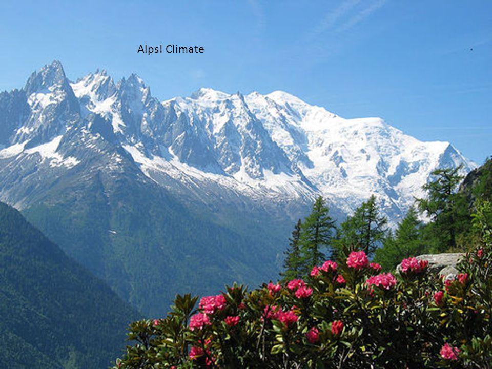 Alps! Climate Alpine Flora/Fauna