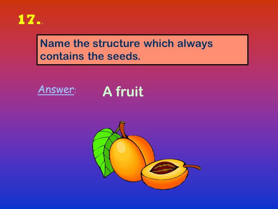 17.. A fruit Name the structure which always contains the seeds.