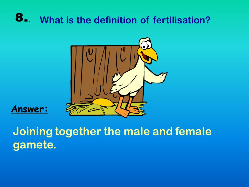 8.. Joining together the male and female gamete.