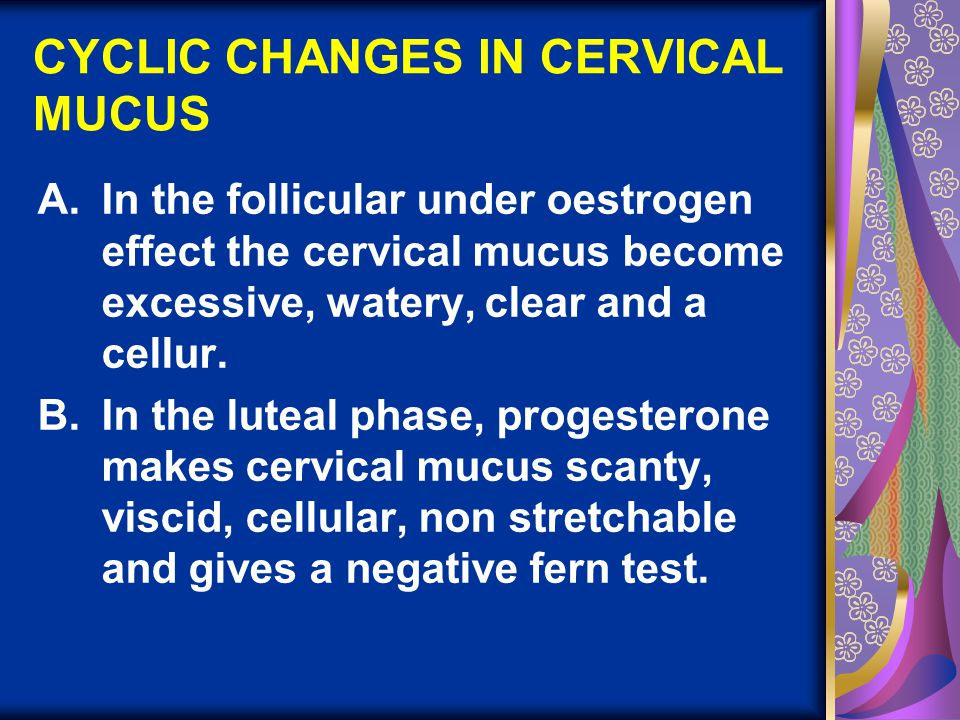 CYCLIC CHANGES IN CERVICAL MUCUS