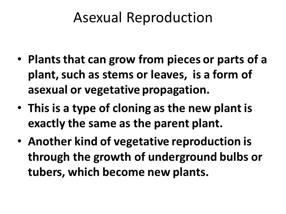 Asexual Reproduction Plants that can grow from pieces or parts of a plant, such as stems or leaves, is a form of asexual or vegetative propagation.