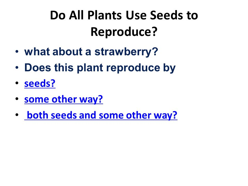 Do All Plants Use Seeds to Reproduce