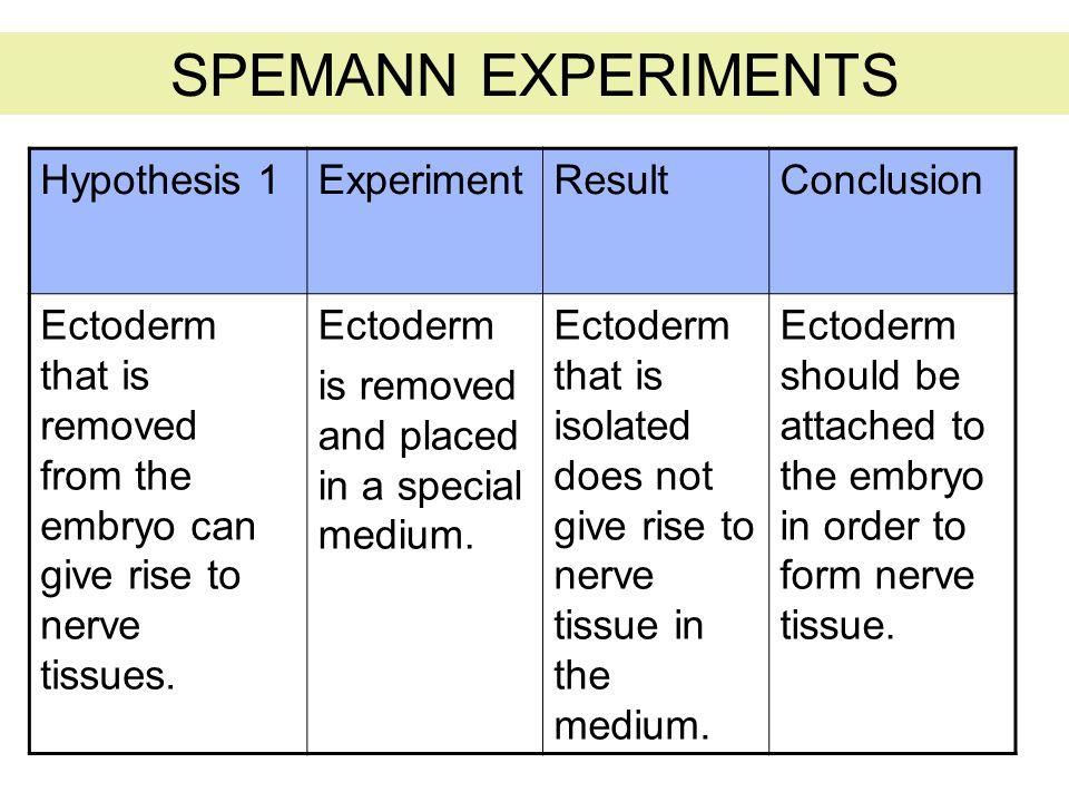 SPEMANN EXPERIMENTS Hypothesis 1 Experiment Result Conclusion